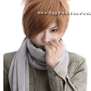 Flyingdragon¡¡Death Note Yagami Light Short Brown Cosplay Party New Wig by FD